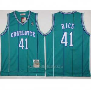 Maglie nba Charlotte Hornet Glen Rice #41 blue Lake