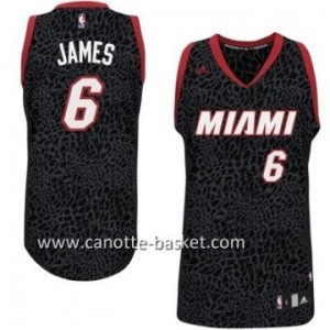 Maglie nba swingman Miami Heat LeBron James #6